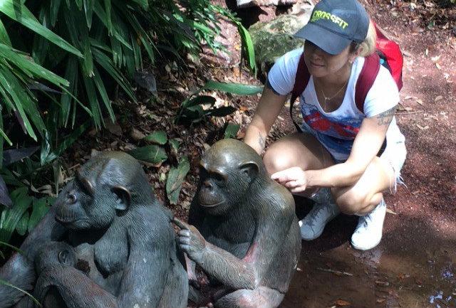 maes neuroticas macacos
